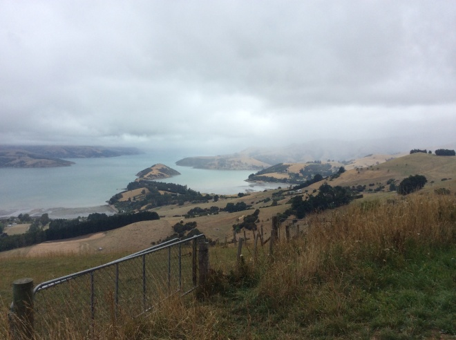 On the road to Pigeon Bay looking back towards Akaroa.