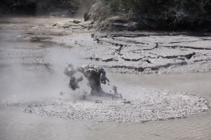 There were also mud pools that were so funny to watch. Why? We have no idea.